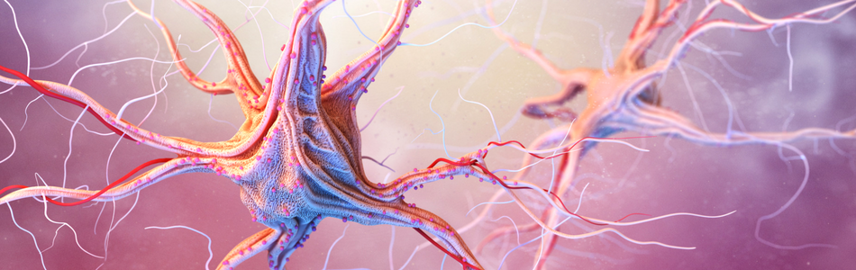 cannabis health effects - nervous system