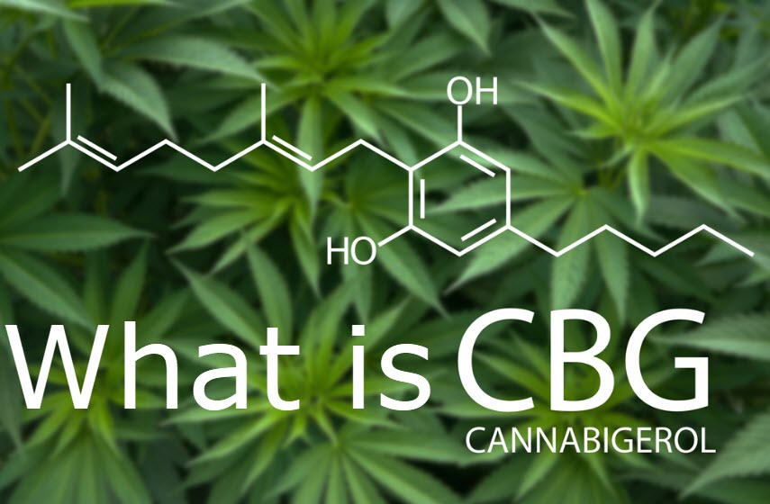 cannabis plants with CBG cannabinoid chemical structure