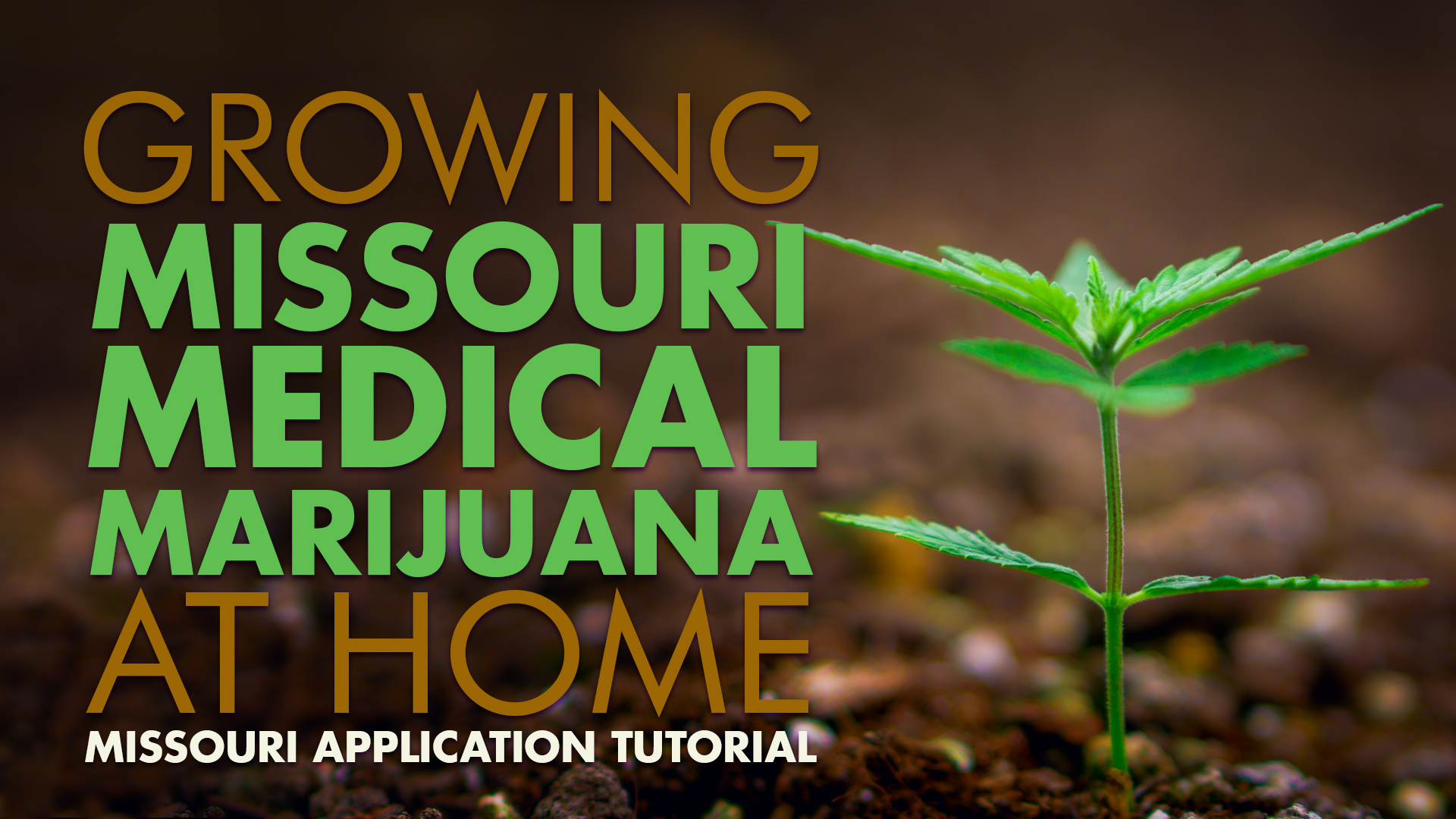 Growing Missouri Medical Marijuana At Home | Green Health