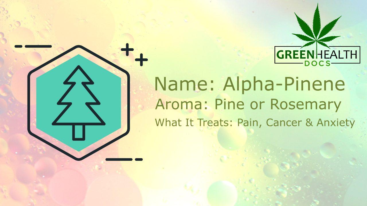 Common Cannabis Terpenes