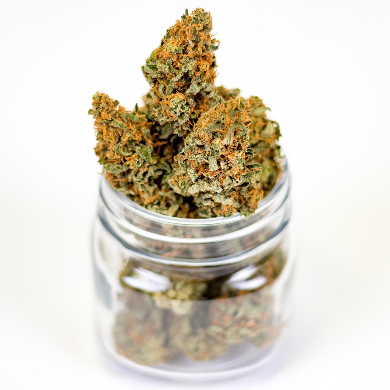 mixing weed and antibiotics