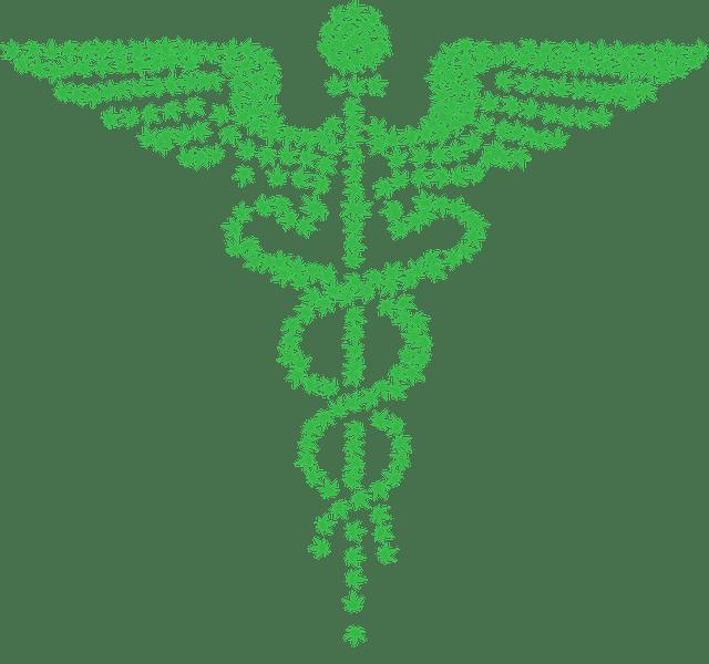 Is Medical Marijuana Legal in Virginia