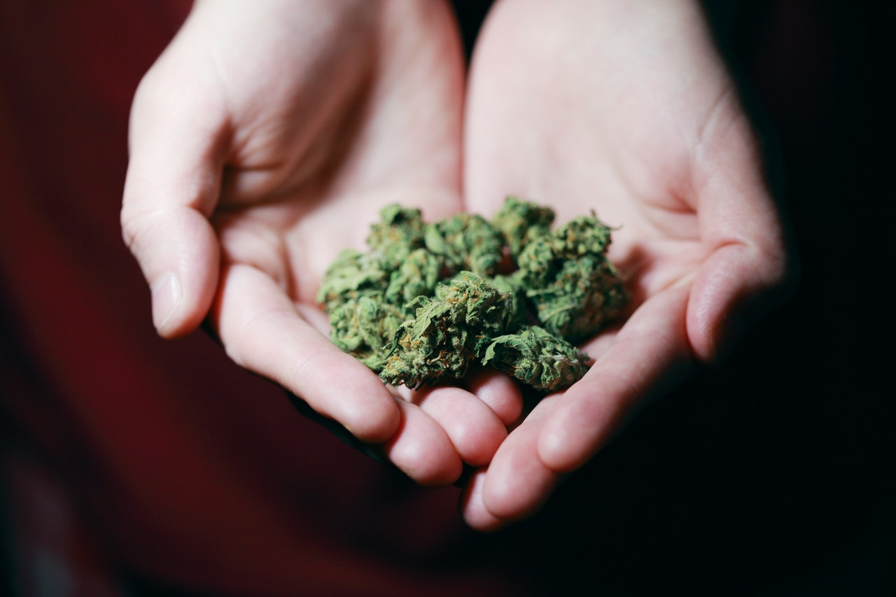 3 Easy Ways to Access Maryland Medical Marijuana During COVID-19