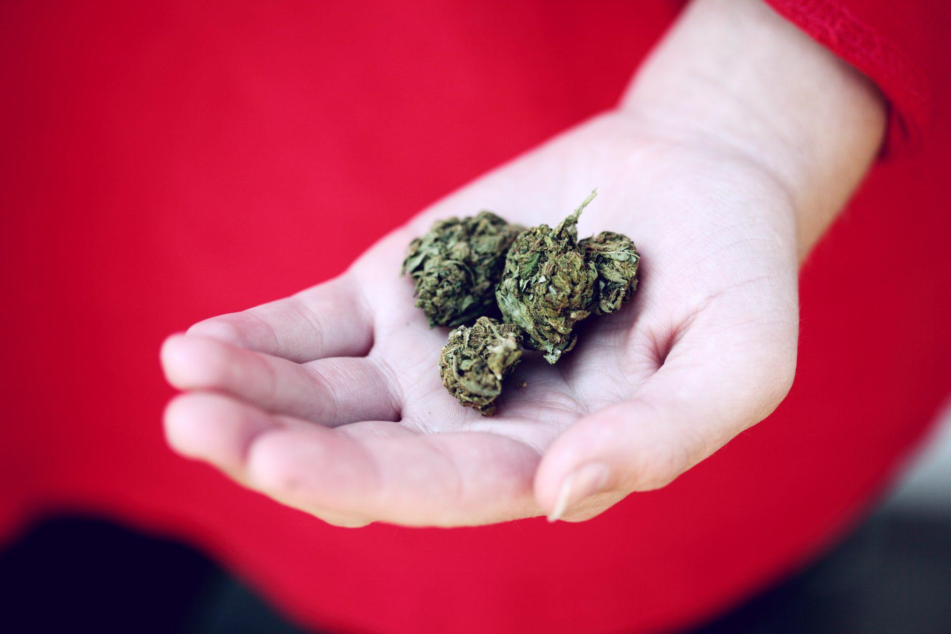 Medical Marijuana Is Coming to Putnam County, West Virginia