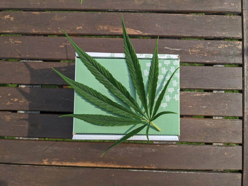 Can You Get a Medical Marijuana Card for ADHD in Missouri